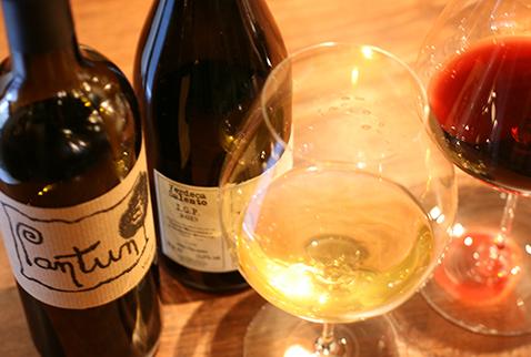 白ワイン写真